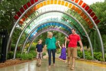Family Fun in Wichita / Take a trip with your family to Wichita. Explore Sedgwick County Zoo - the seventh largest zoo in the nation. Learn while having fun at Exploration Place, Wichita's science and discovery center. Enjoy horseback riding, a water park, and much more.