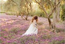 Lavender Love / ༺༻ my lavender obsession ༺༻