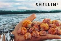 Shellin'