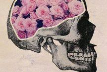 skulls / sKULLS!!!!!