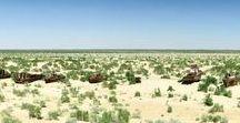 Voyage Ouzbékistan - route de la soie / Toutes mes inspirations pour votre prochain voyage et séjour en Ouzbékistan en famille avec les enfants : circuit sur la route de la soie, que faire et que voir, hôtels de charme... Pour en savoir plus, visiter www.voyagefamily.com !