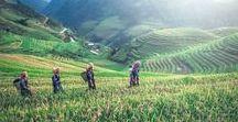 Voyage Bali en famille / Voici le témoignage d'une maman voyageuse partie à Bali 3 semaines avec ses 3 enfants : que faire à Bali, hôtel de charme à Bali... elle vous donne tous ses conseils ! #bali #voyagebali #voyageenfamille #balienfamille #indonésie