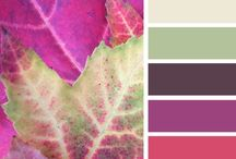COLOR PALLETTE / A few tips about colors and many color pallettes
