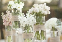 Wedding & Event Ideas / by Contents: Party, Christmas & Home