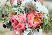 """Blushing Brides  / Perfect Shades of bridal pink - inspirations for the on trend """"Blushing Bride"""" from runway to the alter!"""