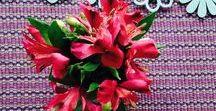 Flores & Folhas em casa / Flores ou simples folhagens que você pode pegar na rua mudam a cara da decoração na hora. Perfume e aconchego!