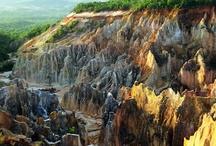Parcs Nationaux de Madagascar / Les Parcs Nationaux font partie de l'identité de Madagascar... c'est bien pour cette raison que Madagascar sur Mesure vous propose des voyages dédiés à la découverte des Parcs Nationaux de Madagascar !