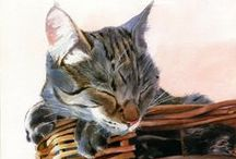 Watercolor Dreams - Furry Friends, Mostly  Cats