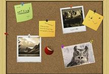 Кураторство / Что такое кураторство. Инструменты для курирования содержания Pinterest / Tumblr / Scoop.it / Pin.me и др
