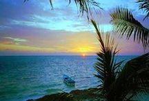 TROPICAL PARADISE / ╭⊰✿ THANK YOU FOR FOLLOWING ME ✿⊱╮ / by ╭⊰ ✿ S H E R E E ✿ ⊱╮