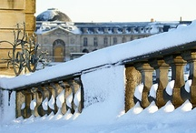 Winter Wonderland / by Traveling Ruygt