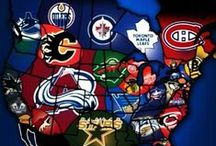 Hockey / I'm a die-hard Montreal Canadiens fan, but also a fan of the Tampa Bay Lightning and Los Angeles Kings.