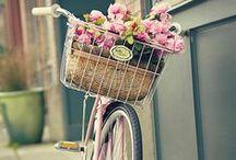 ●  Bike me! ●