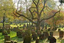 gravestones-cemetaries / by pamela henrich