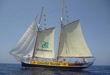 Goletta Verde 2013 / Campagna estiva per la salvaguardia del mare e delle coste italiane. www.legambiente.it/golettaverde