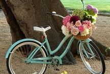Bicycle love~