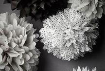 kukkia ja ideoita