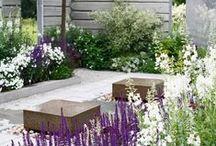 Home | Outdoor / Backyard . Garden . Terrace