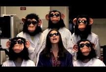 Science parodies, raps etc..