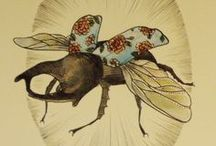 Insect art & illustrations
