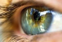 Eyes & sight