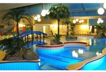 Artificial Plants in Swimming Pools / Here you will find some of the most realistic Artificial Plants being used in indoor swimming pools.