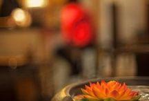 TETERERIA tea room / Tetería Barcelona. Tetería especializada en té chino y té japonés. Tés de propia importación desde los países de origen. Actividades de talleres, cursos y ceremonia del té. www.teteria.biz