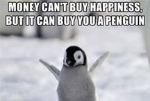 Penguin Humor / Fun memes, crazy gadgets, DIY projects and all the penguin mayhem we can find on the web!