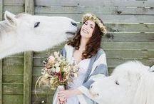 Hochzeit | Tierische Begleiter