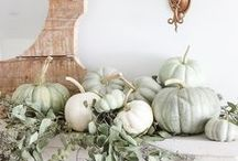 FALL in Love / Autumn is my favorite time of the year!  I love decorating for Fall.