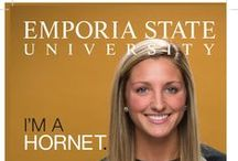 I'm A Hornet auditions 2015 / If you have questions we haven't answered feel free to comment on posts or message us! / by Emporia State University