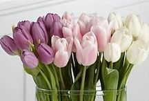 Blooms - Tulips / Tulips are the quintessential spring flower and will add just the right amount of class and sass to your wedding day! Check out these tulip bouquets, centerpieces, and other wedding flowers.