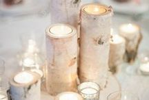 Wedding Style - Birch / Find inspiration for your Birch themed wedding here. From arches, to centerpiece decor, to favors, birch bark and birch branches and log slices can be incorporated into every area of your wedding!