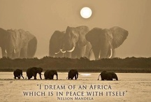 I Dream of Africa... ❥  / This is a homage to my love of Africa... my time spent in Africa, especially South Africa, has created such a deep love for her nature and her culture and her land. That i created this... for one of my favorite places on this beautiful Earth.  / by Heather Thompson