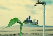 Go Green / Go Green and Environmental Innovation.