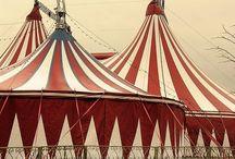 Cirkus Bizarre / Extraordinary