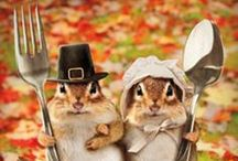 Thanks Giving! / Thanks Giving Recipes, Crafting and Decor