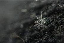 Nieve Snow Neve Neige <3