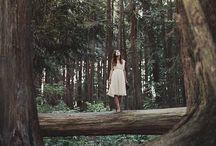 wonderland • forest