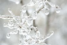 WHITE BEAUTY / Winter, Ice and fresh whites...delicate soft and warm whites.   / by Jeannette Chau