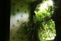 Abandoned / Des lieux désaffectés où la nature a pris le dessus