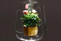 Green gifts / Des objets issus du monde végétal, façonnés par l'homme
