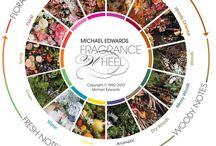 ime . perfume things