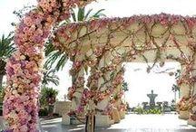 Wedding: Venue/Reception Decorations / by Wanda Parsons