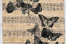 Butterflies, Dragonflies and Bees!