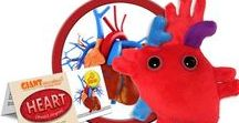 Heart - Heart Organ / How much do I love thee? How about a million barrels worth and 2.5 billion heartbeats! GIANTmicrobes are plush stuffed animals that look like tiny microbes - only a million times actual size! Gag and geek gifts, science, microbiology and biology toys for students, teachers, scientists, nurses and doctors - each coming with an image and information about the real microbe it represents. They make great educational learning tools as well as amusing gifts for anyone with a sense of humor.