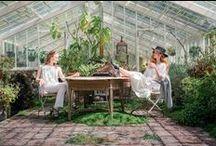 Glasshouse Garden