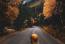 Places / Adventure awaits