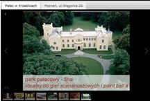 Agencja Social Media Websoul / Realizacje agencji social media Websoul