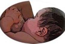 Lactation / Breastfeeding